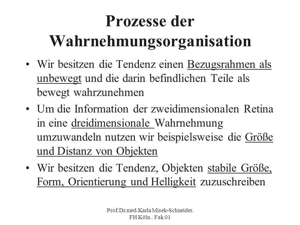 Prozesse der Wahrnehmungsorganisation