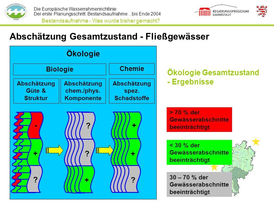 Abschätzung Gesamtzustand - Fließgewässer