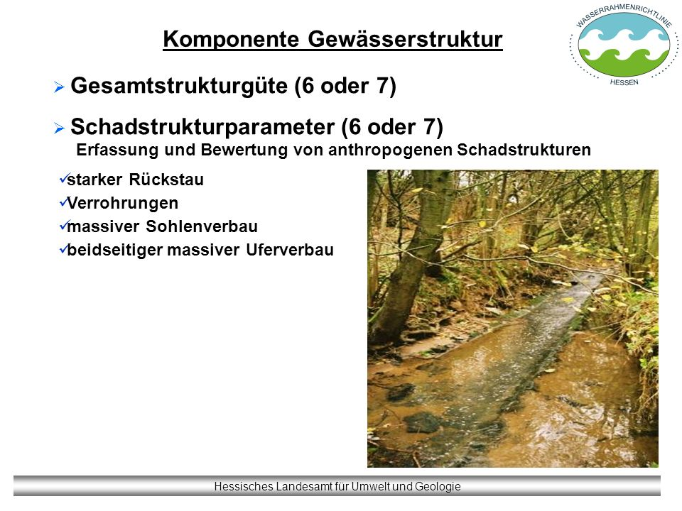 Komponente Gewässerstruktur