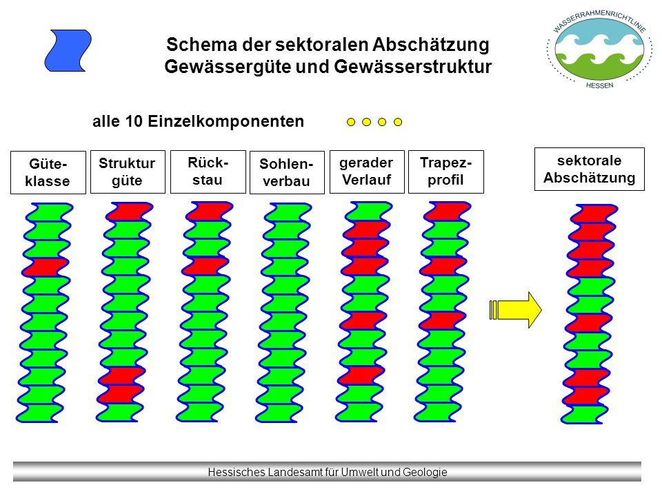 Schema der sektoralen Abschätzung Gewässergüte und Gewässerstruktur