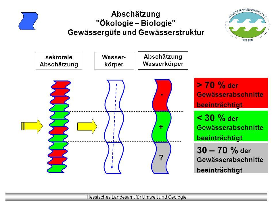 Abschätzung Ökologie – Biologie Gewässergüte und Gewässerstruktur