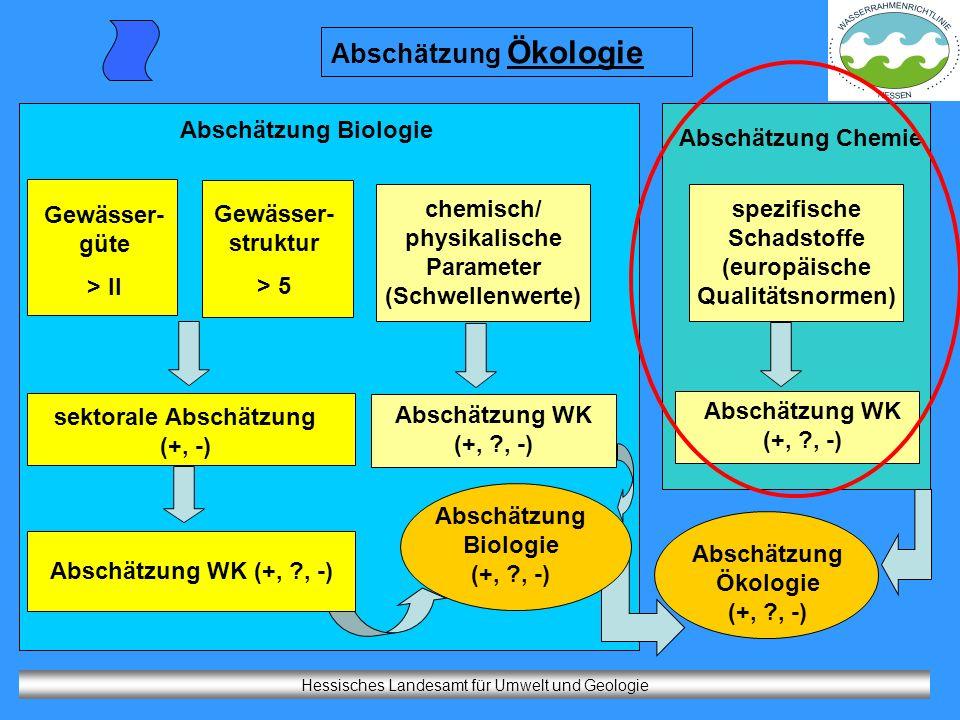 chemisch/ physikalische Parameter (Schwellenwerte)