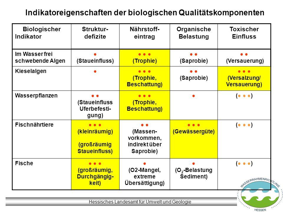 Indikatoreigenschaften der biologischen Qualitätskomponenten