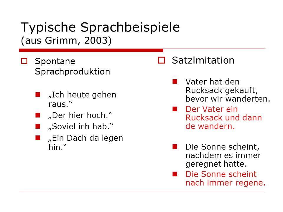 Typische Sprachbeispiele (aus Grimm, 2003)