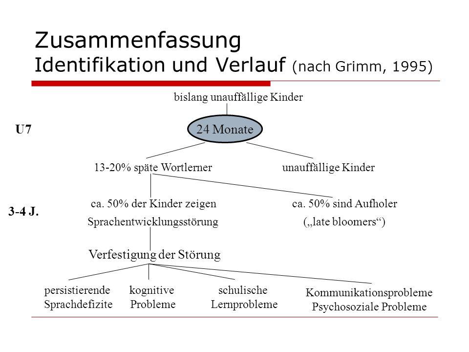 Zusammenfassung Identifikation und Verlauf (nach Grimm, 1995)