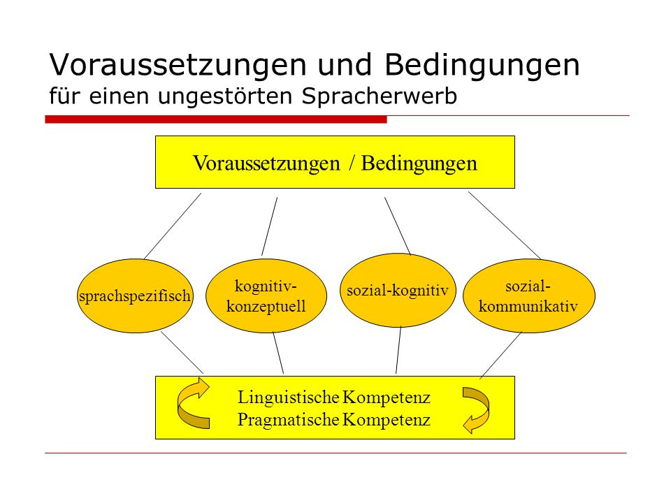 Voraussetzungen und Bedingungen für einen ungestörten Spracherwerb