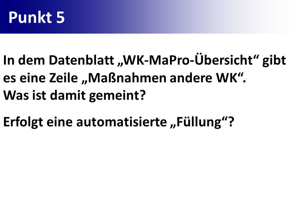 """Punkt 5 In dem Datenblatt """"WK-MaPro-Übersicht gibt es eine Zeile """"Maßnahmen andere WK . Was ist damit gemeint"""