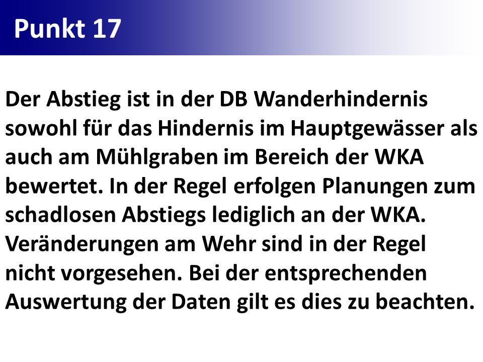 Punkt 17