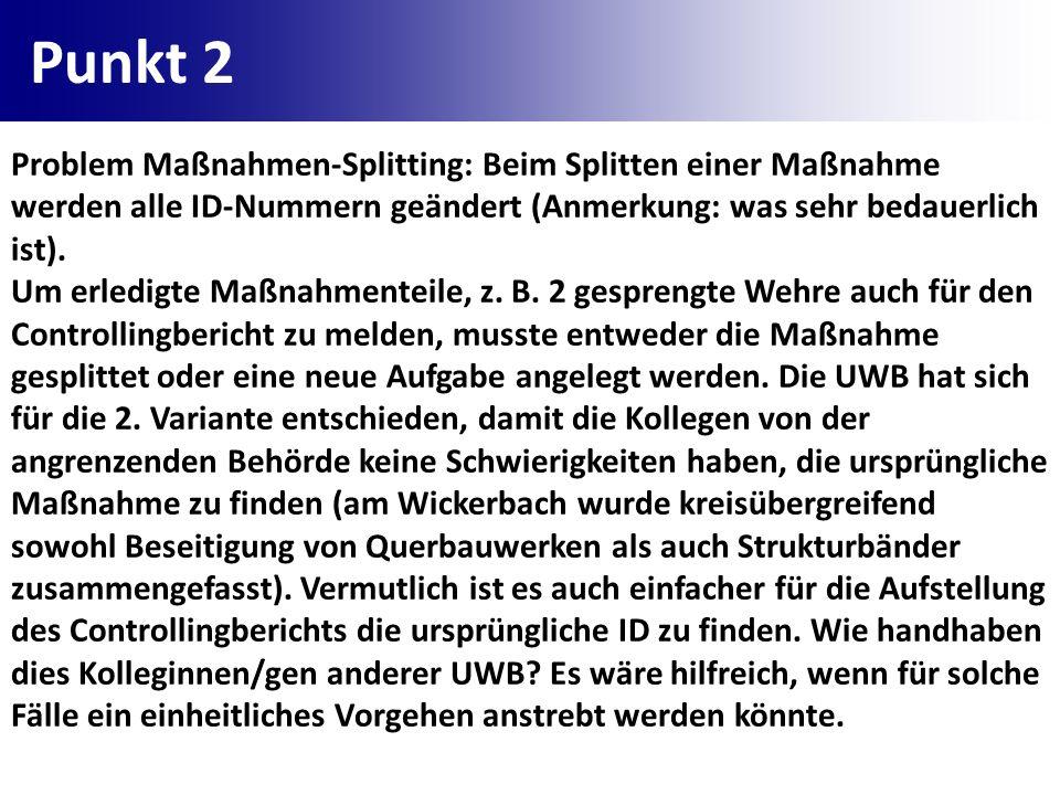 Punkt 2 Problem Maßnahmen-Splitting: Beim Splitten einer Maßnahme werden alle ID-Nummern geändert (Anmerkung: was sehr bedauerlich ist).