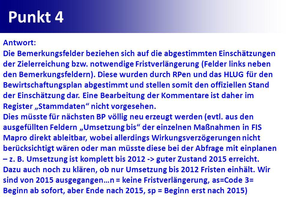 Punkt 4