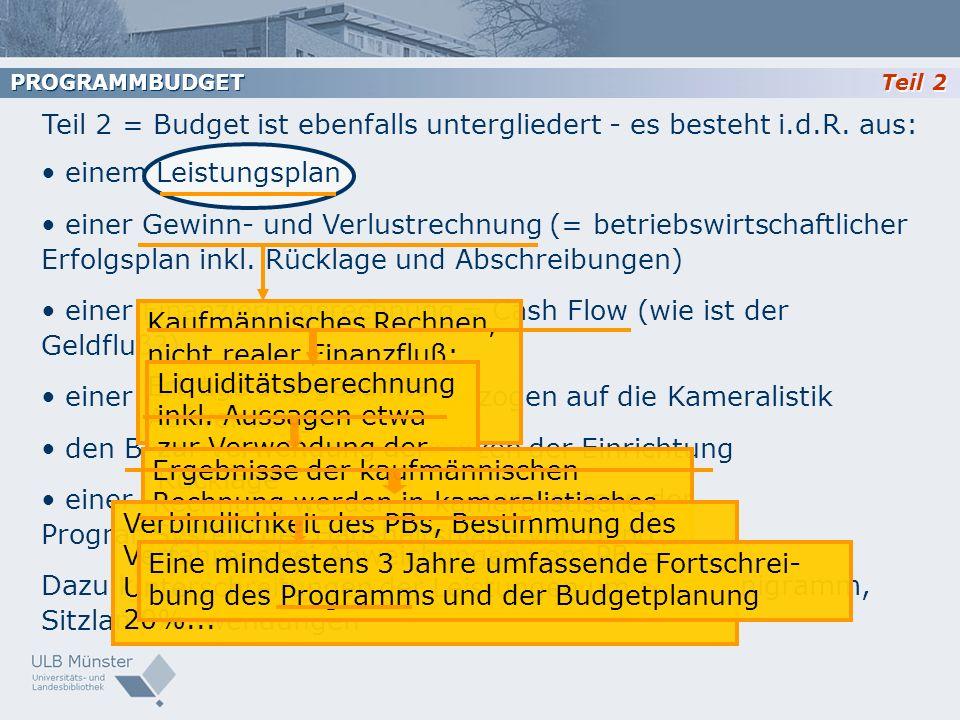Teil 2 = Budget ist ebenfalls untergliedert - es besteht i.d.R. aus: