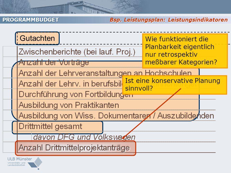 PROGRAMMBUDGET Bsp. Leistungsplan: Leistungsindikatoren. Gutachten.