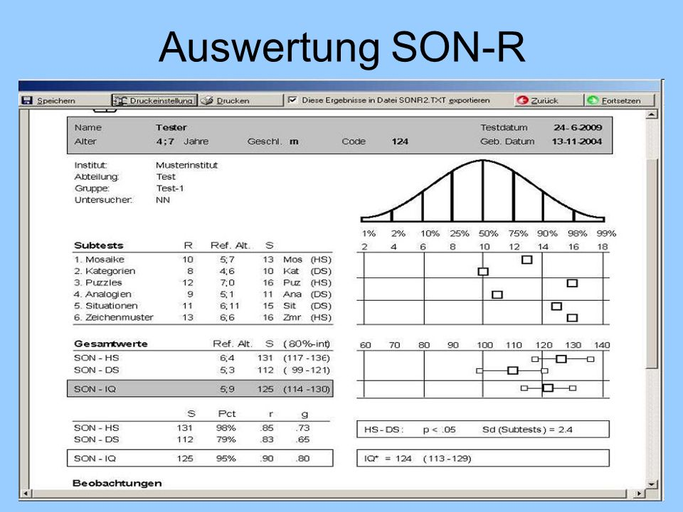 Auswertung SON-R