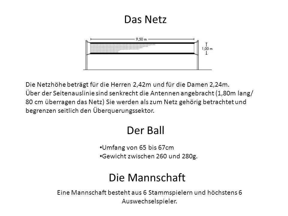 Das Netz Der Ball Die Mannschaft