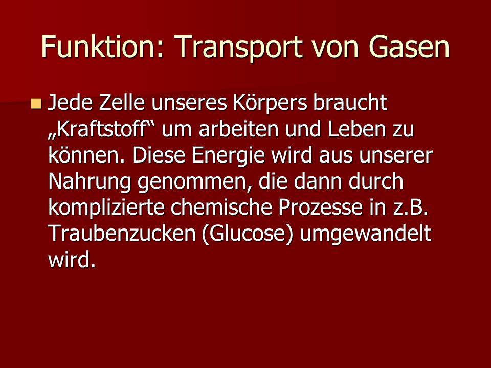 Funktion: Transport von Gasen