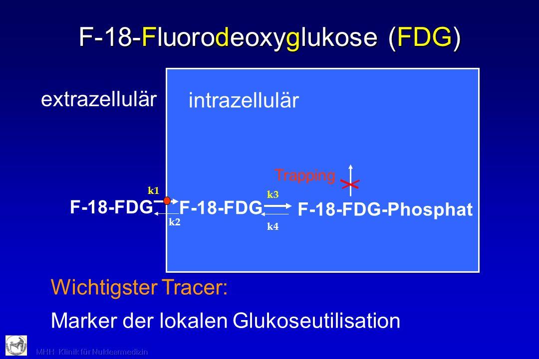 F-18-Fluorodeoxyglukose (FDG)