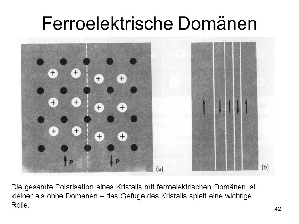 Ferroelektrische Domänen