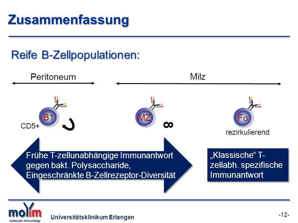 Zusammenfassung 8 Reife B-Zellpopulationen: Peritoneum Milz B1 MZ Fo