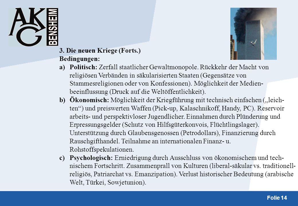 3. Die neuen Kriege (Forts.)