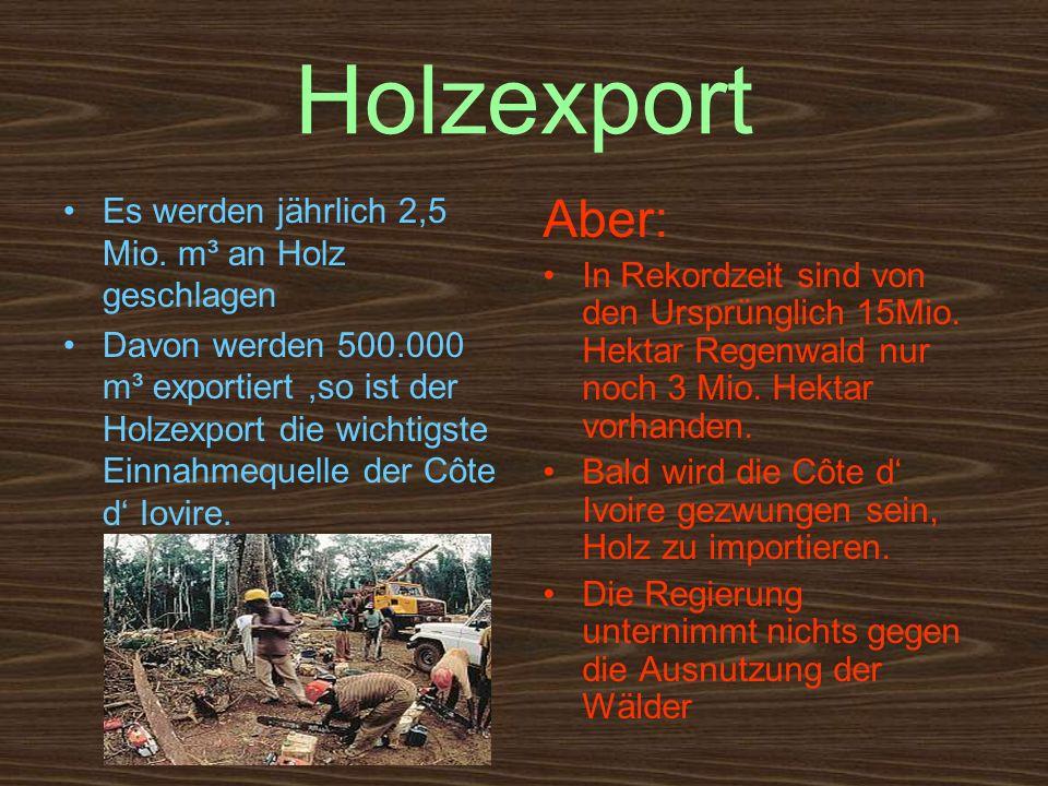 Holzexport Aber: Es werden jährlich 2,5 Mio. m³ an Holz geschlagen