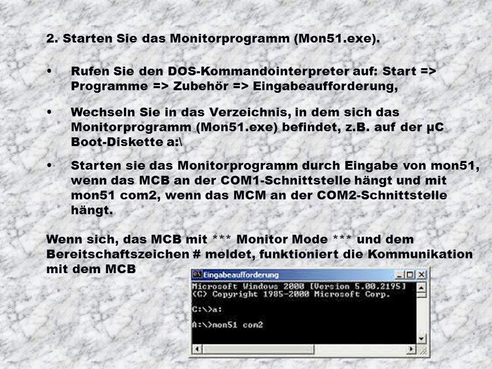 2. Starten Sie das Monitorprogramm (Mon51.exe).