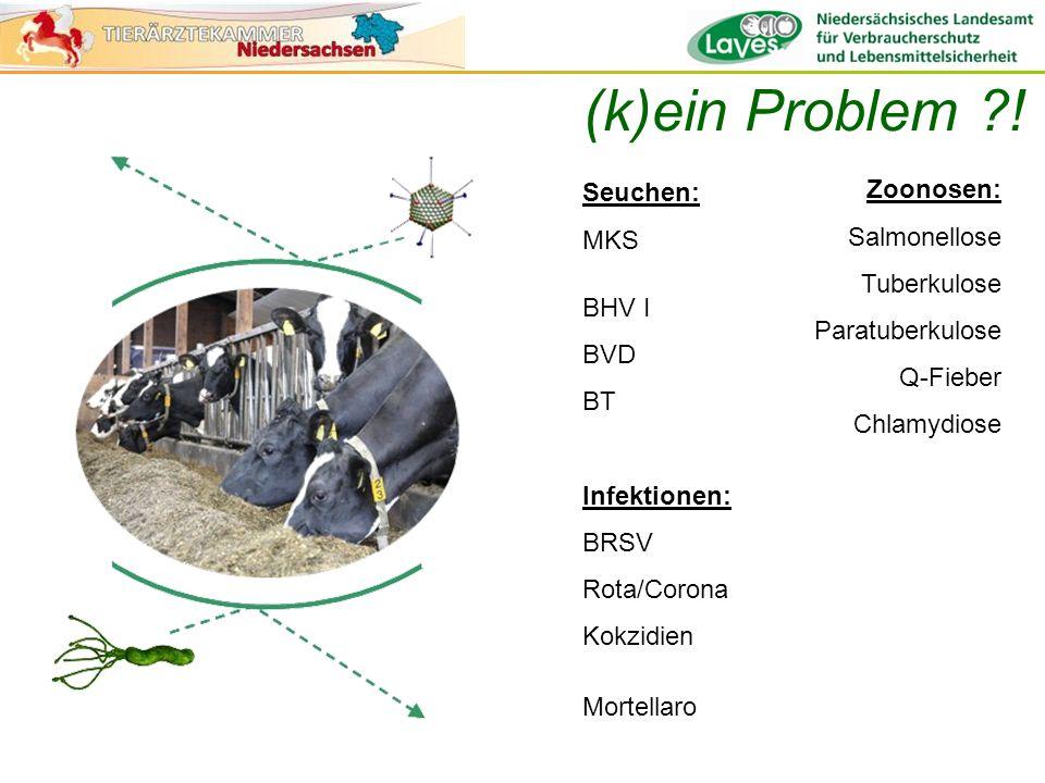 (k)ein Problem ! Zoonosen: Seuchen: MKS Salmonellose Tuberkulose