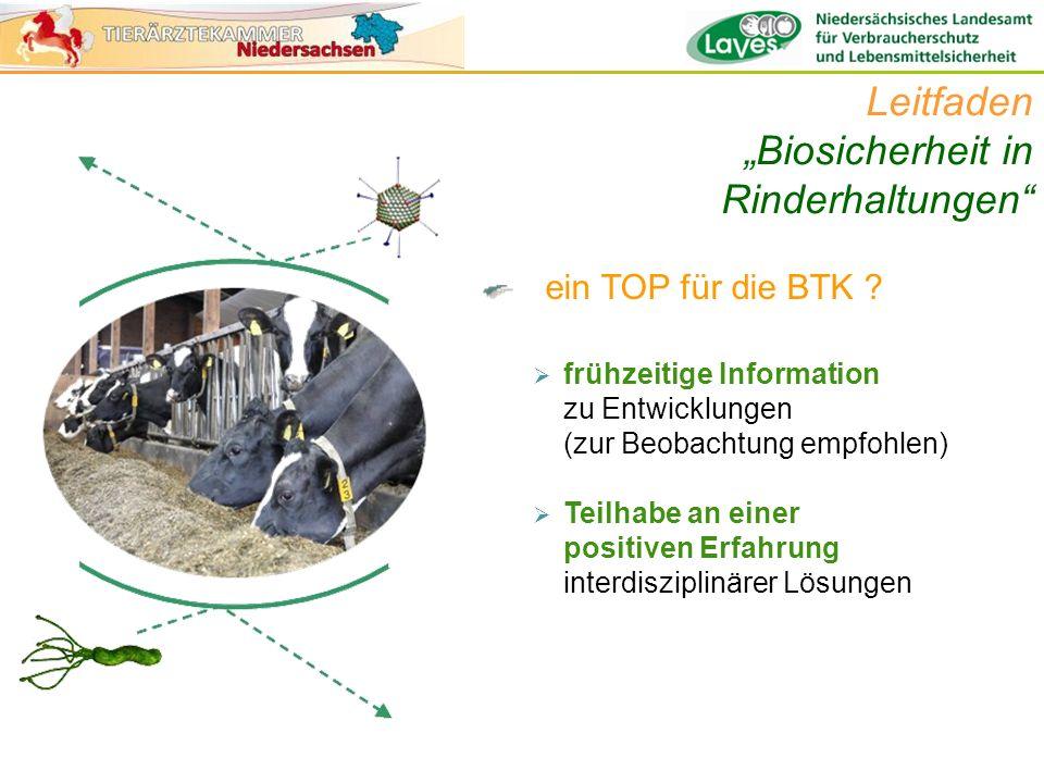"""Leitfaden """"Biosicherheit in Rinderhaltungen"""