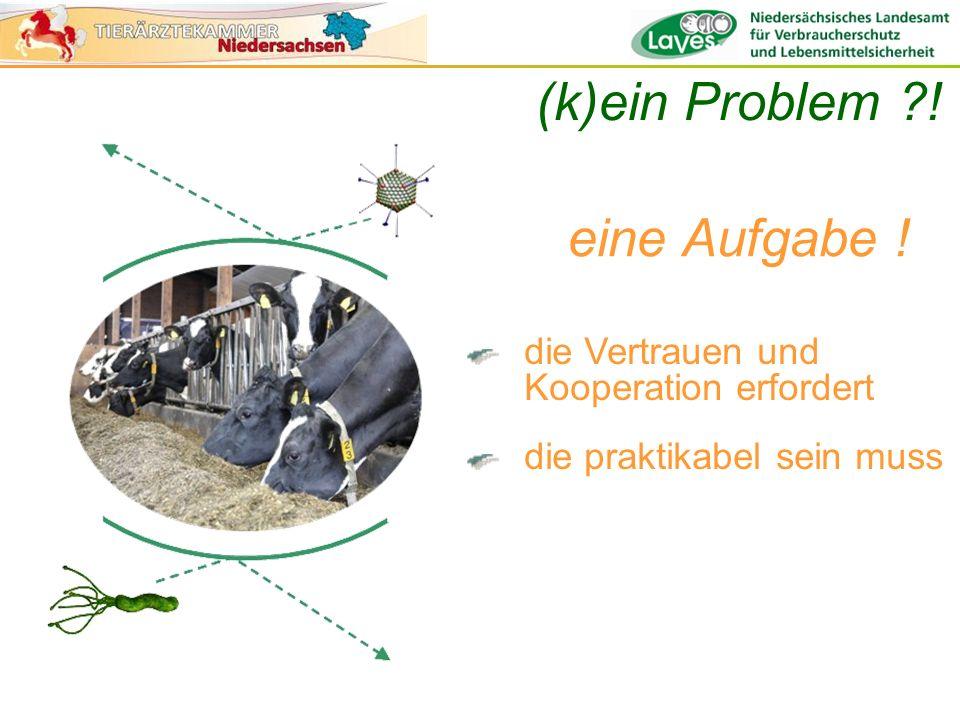 (k)ein Problem ! eine Aufgabe !