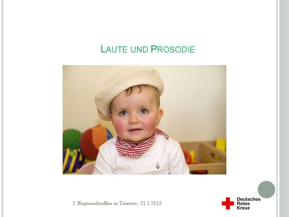 Laute und Prosodie 2. Regionaltreffen in Teterow, 21.1.2013
