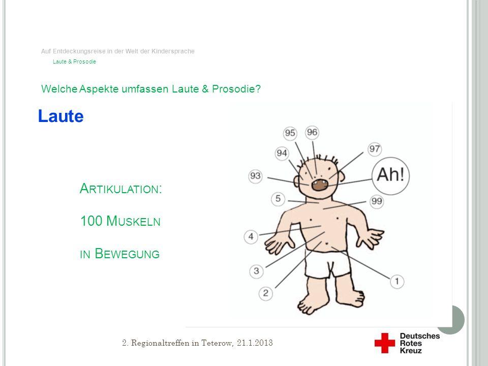 Artikulation: 100 Muskeln in Bewegung