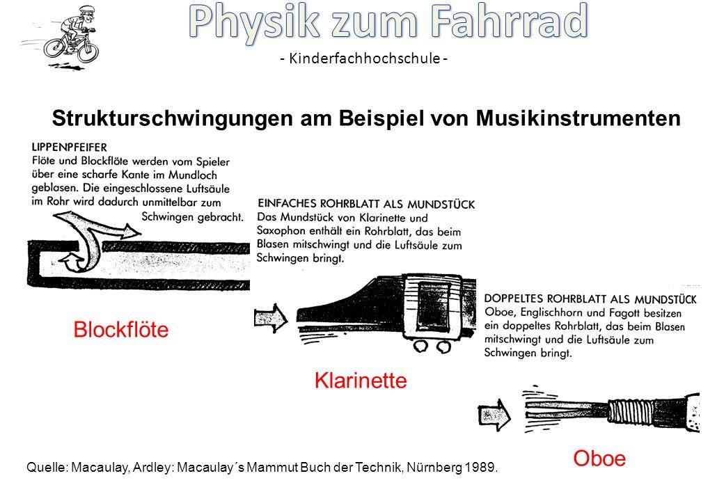 Strukturschwingungen am Beispiel von Musikinstrumenten