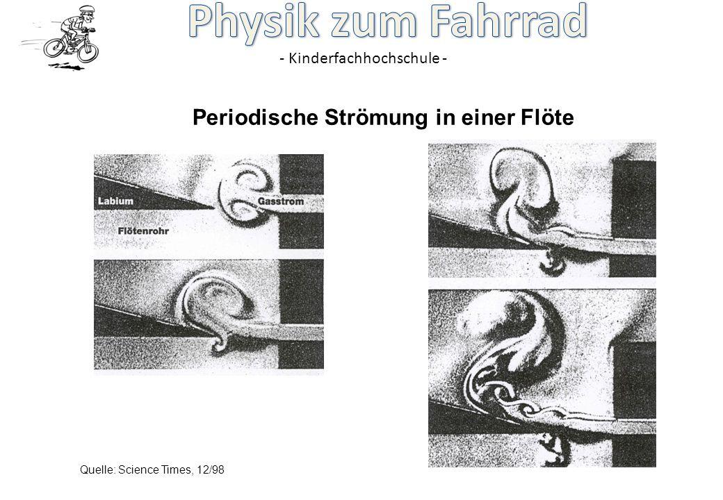 Periodische Strömung in einer Flöte