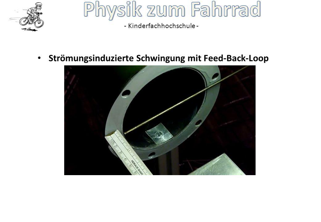 Strömungsinduzierte Schwingung mit Feed-Back-Loop