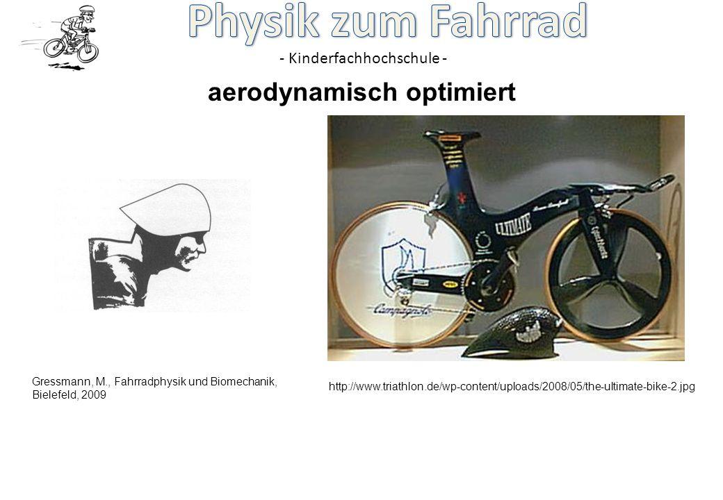 aerodynamisch optimiert