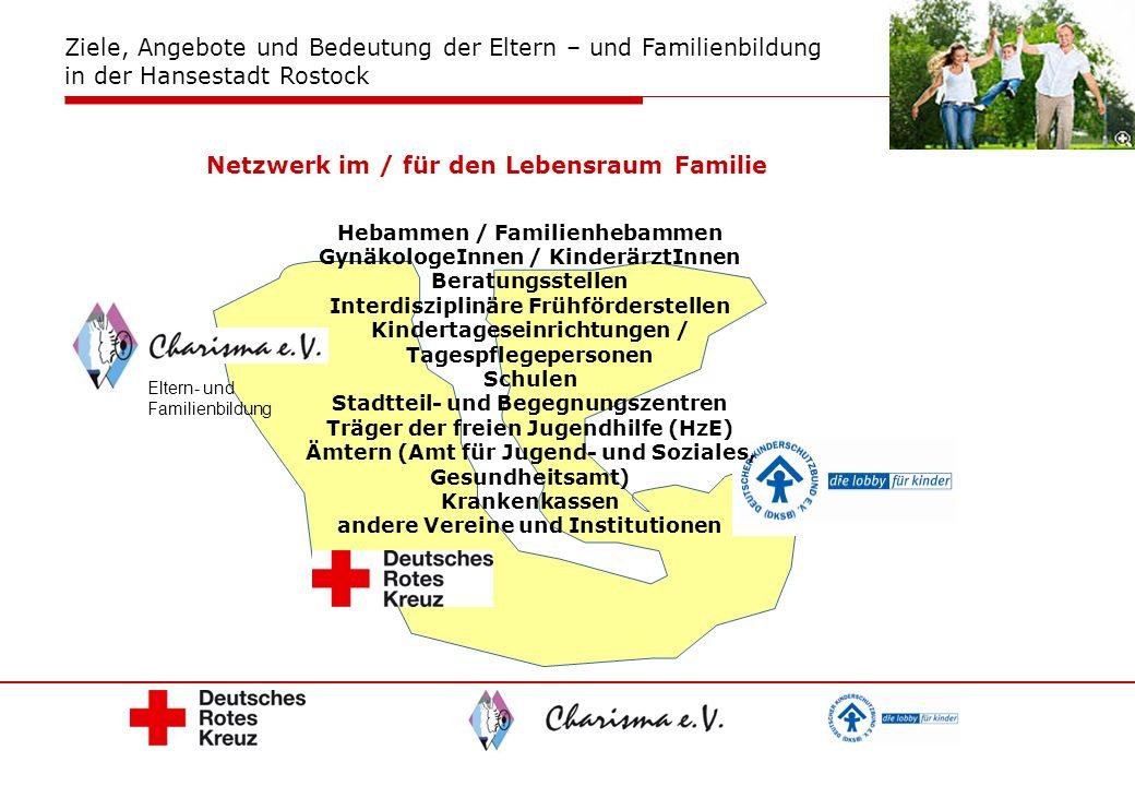 Netzwerk im / für den Lebensraum Familie
