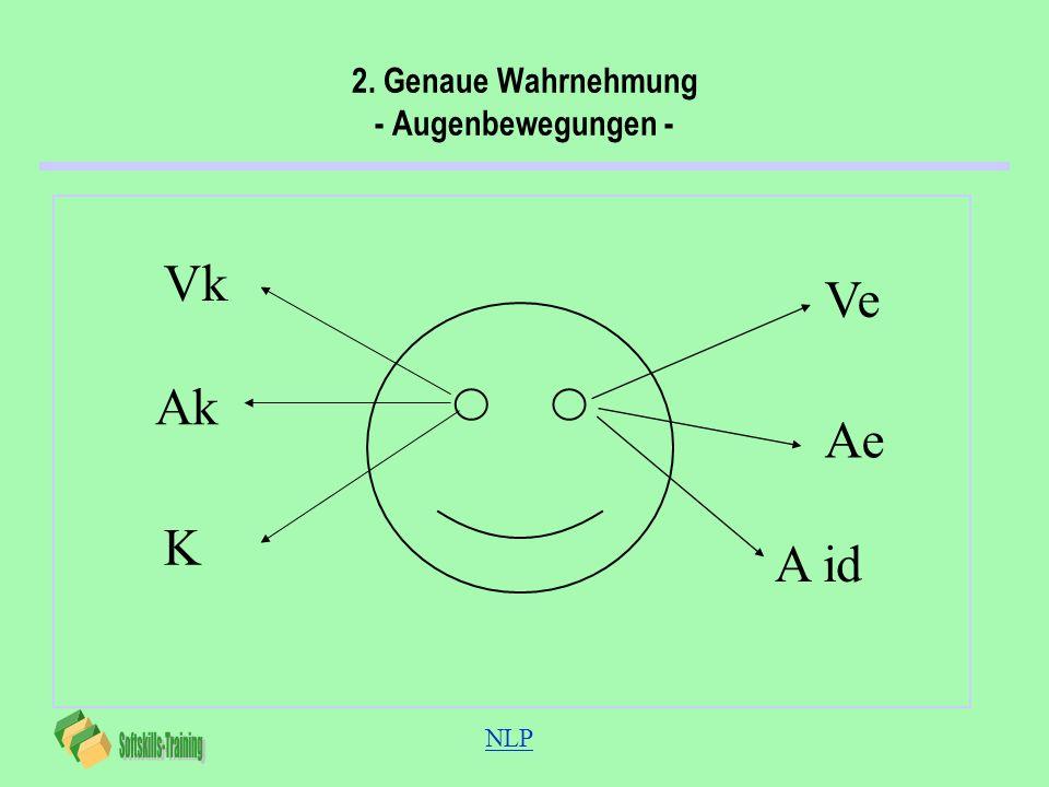 2. Genaue Wahrnehmung - Augenbewegungen -