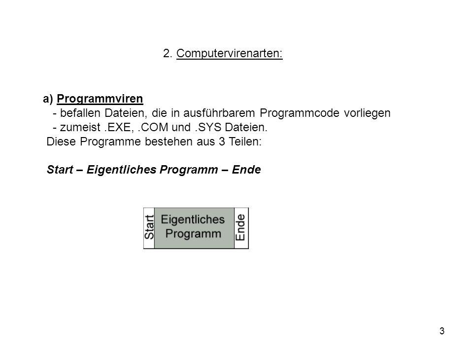 2. Computervirenarten: a) Programmviren. - befallen Dateien, die in ausführbarem Programmcode vorliegen.