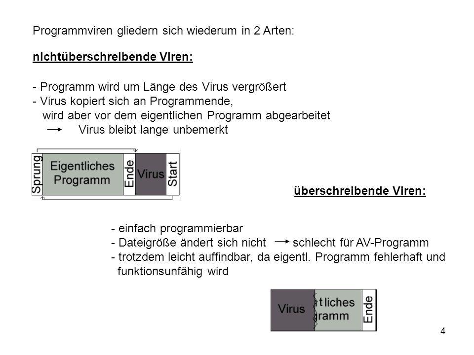 Programmviren gliedern sich wiederum in 2 Arten: