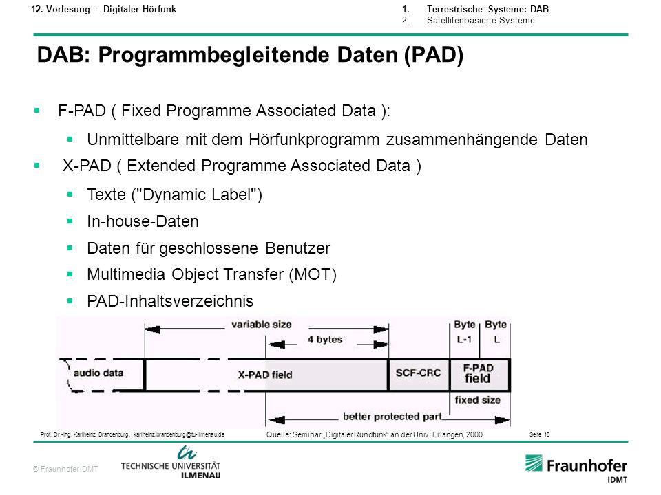DAB: Programmbegleitende Daten (PAD)