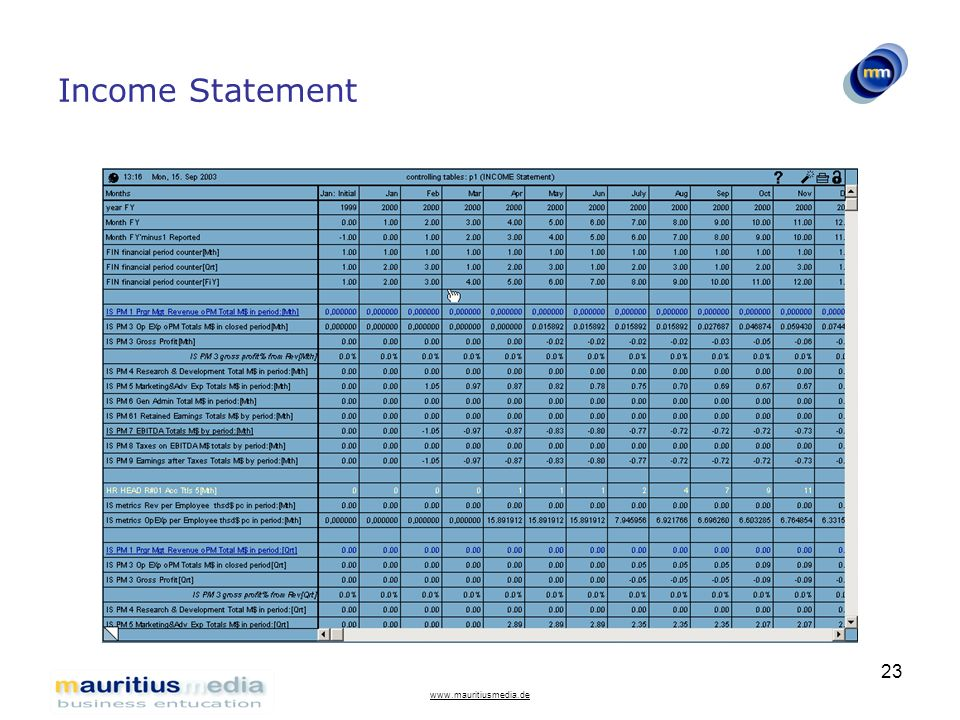 Income Statement www.mauritiusmedia.de