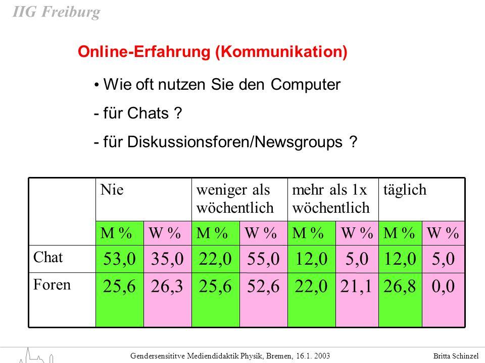 Online-Erfahrung (Kommunikation)