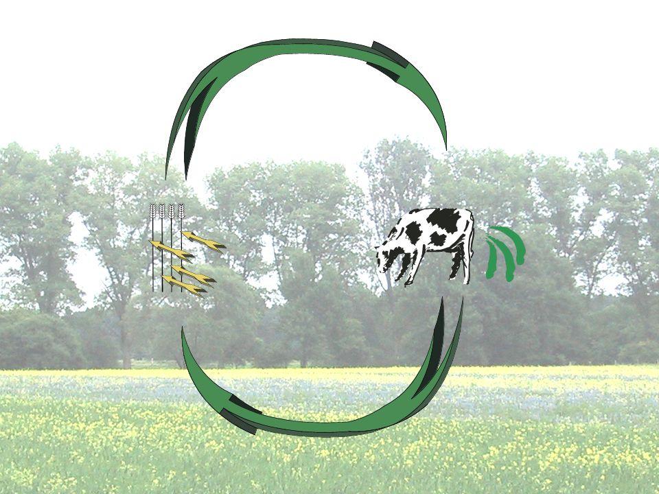 Das wertvollste ist das Stroh, welches für das Vieh gebraucht wird und der Dung, den die Pflanzen brauchen