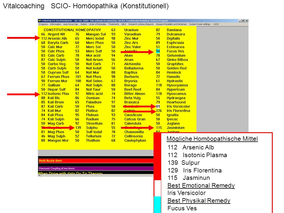 Vitalcoaching SCIO- Homöopathika (Konstitutionell)