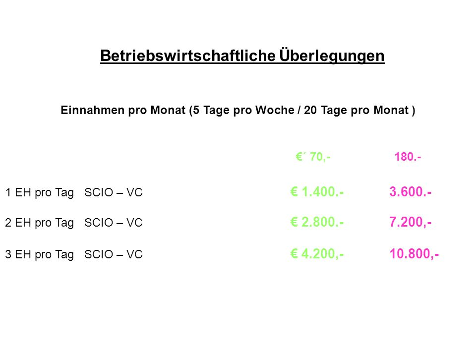 Einnahmen pro Monat (5 Tage pro Woche / 20 Tage pro Monat )