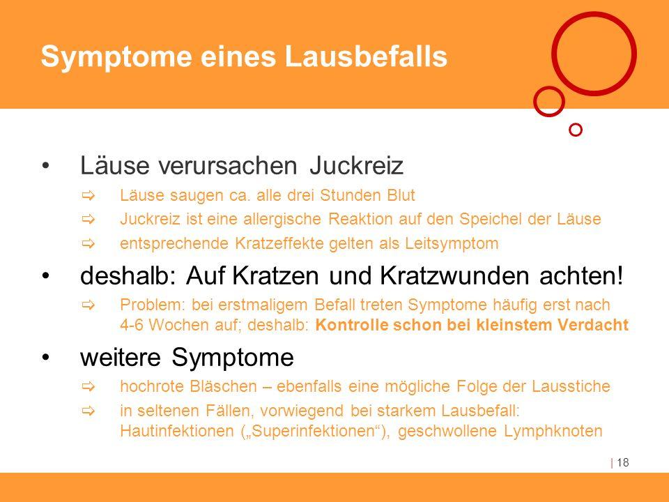 Symptome eines Lausbefalls