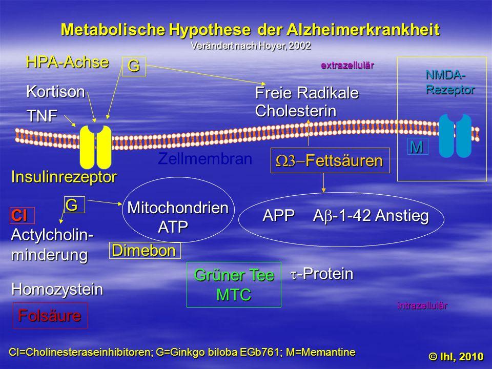 Metabolische Hypothese der Alzheimerkrankheit