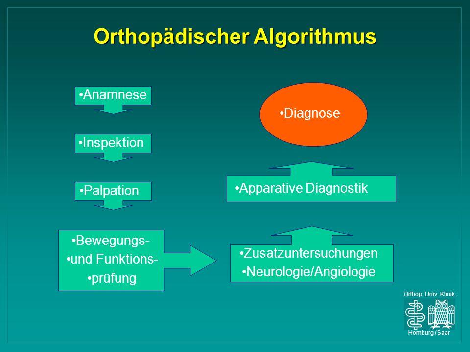 Orthopädischer Algorithmus