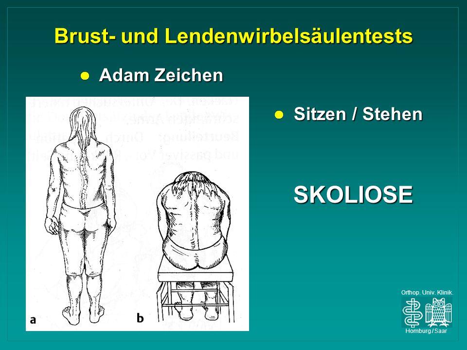 Brust- und Lendenwirbelsäulentests
