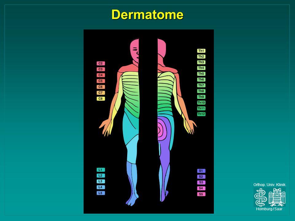 Dermatome Orthop. Univ. Klinik. Homburg / Saar