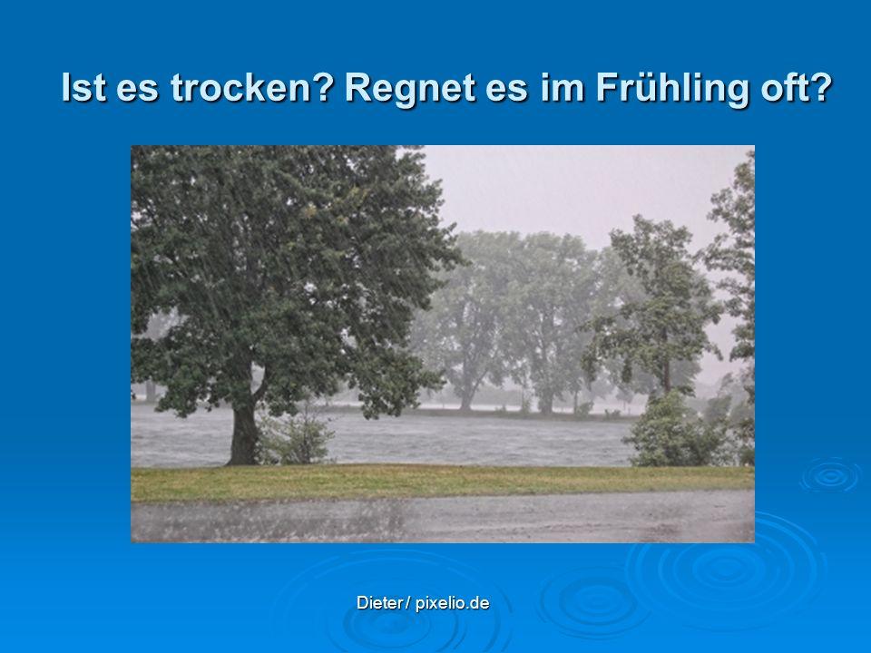 Ist es trocken Regnet es im Frühling oft